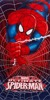 Marvel || Spiderman